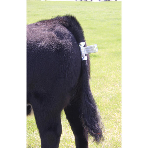 View larger image of Tail Clamp for Cattle