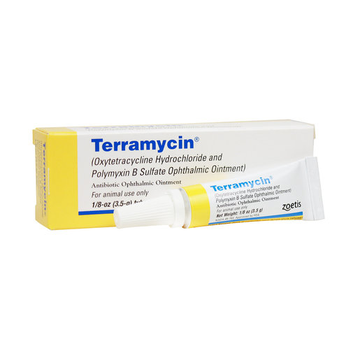 View larger image of Terramycin Ophthalmic Ointment for Animal Use
