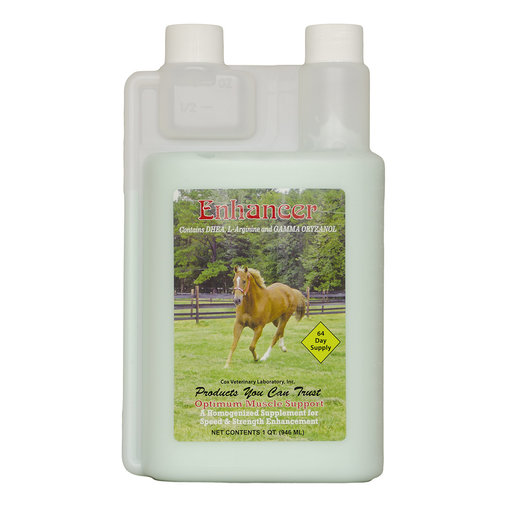View larger image of The Enhancer for Horses