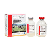 Titanium 5 L5 HB Cattle Vaccine