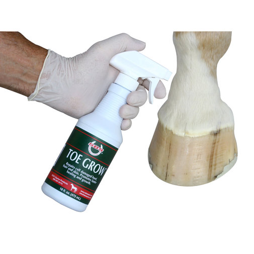 View larger image of Toe Grow Horse Hoof Care