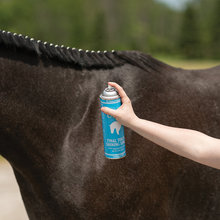 Ultra Final Touch Shining Spray for Horses