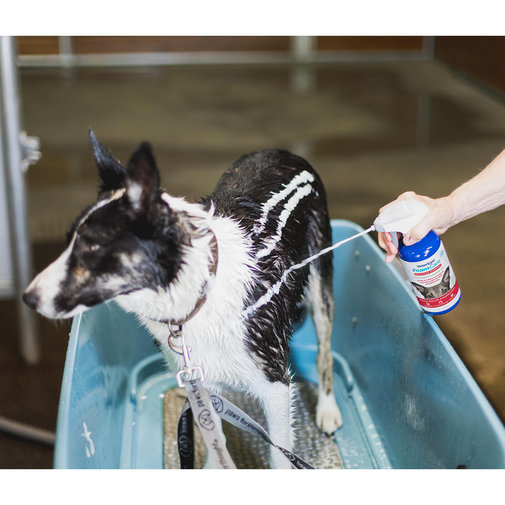 View larger image of Vetericyn FoamCare Medicated Pet Shampoo