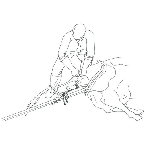 View larger image of Vink Calf Puller