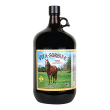 Vita-Sorbine Iron-Rich Vitamin Supplement for Horses