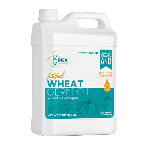 View larger image of Wheat Germ Oil for Animals
